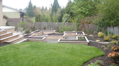 Edible garden with raised beds designed by Environmental Construction Inc. in Kirkland WA
