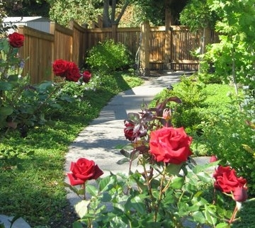 Flower gardens designed by Environmental Construction Inc. in Kirkland WA