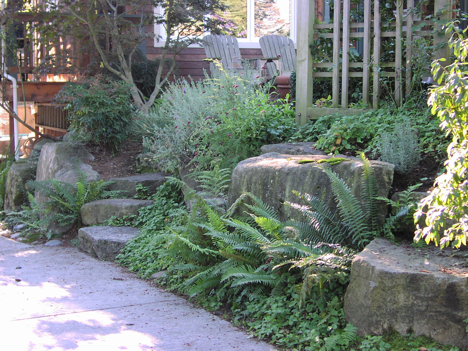 Native gardens designed by Environmental Construction Inc. in Kirkland WA