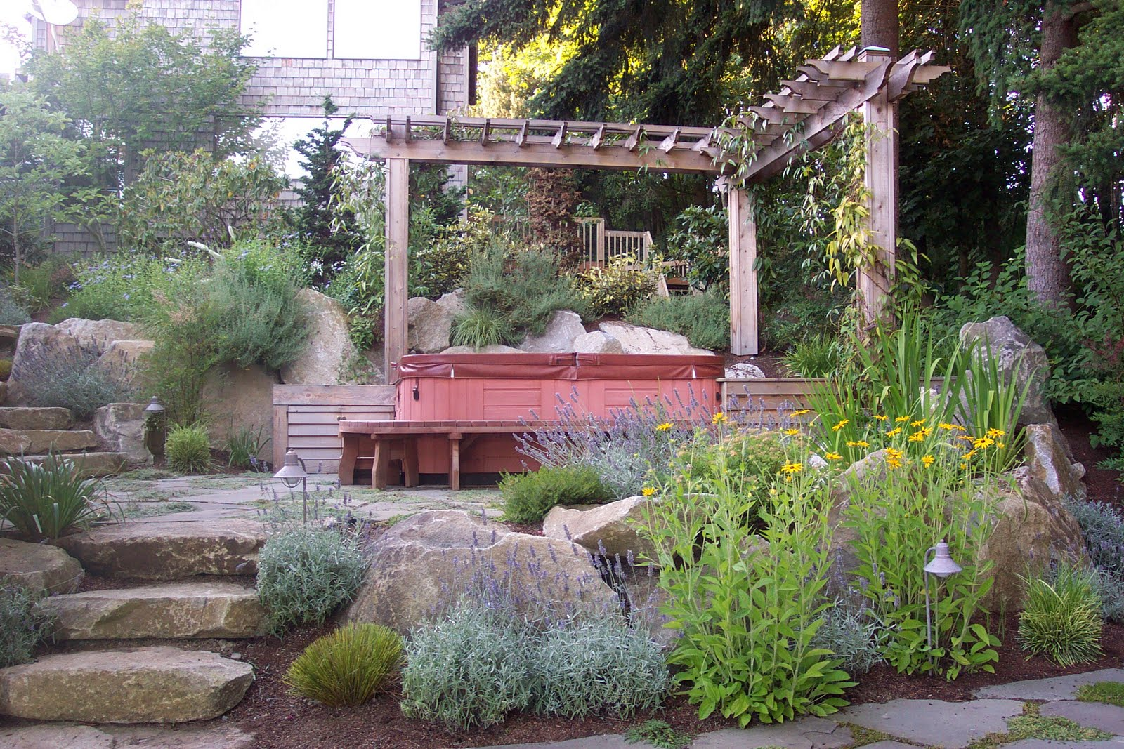 Privacy gardens designed by Environmental Construction Inc. in Kirkland WA