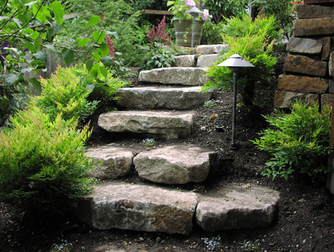 Stone steps landscaped with greenery by Environmental Construction Inc. in Kirkland WA